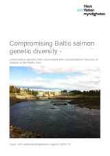Compromising Baltic salmon genetic diversity