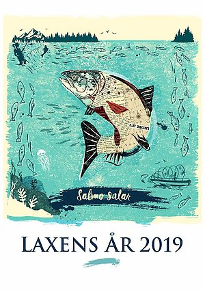 Illustration Laxens år 2019